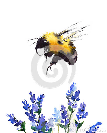 Free Bumblebee Flying Over Blue Flowers Watercolor Illustration Hand Drawn Stock Photography - 88837102