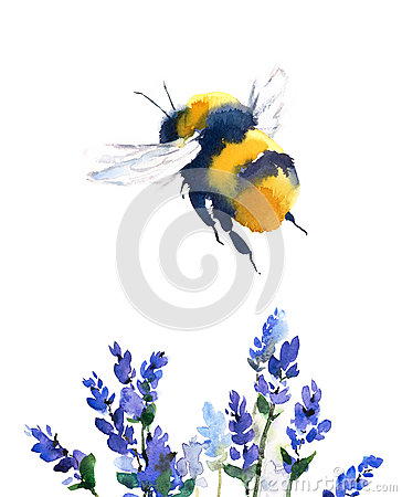 Free Bumblebee Flying Over Blue Flowers Watercolor Illustration Hand Drawn Stock Photography - 90741302