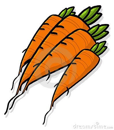 Bunch of Carrots illustration