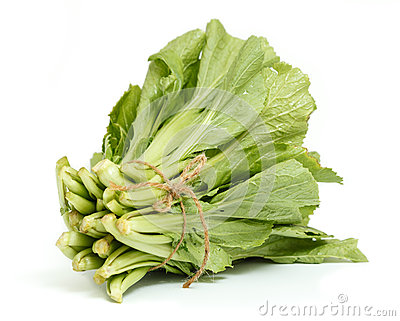 A bunch of Chinese cabbage  on white background