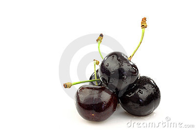 Bunch of fresh black sweet cherries