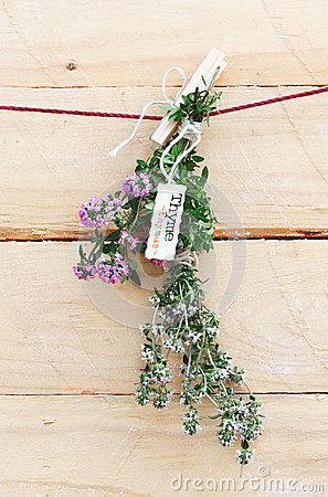 Bunch Of Fresh Thyme With Name Label Stock Images - Image: 24920554