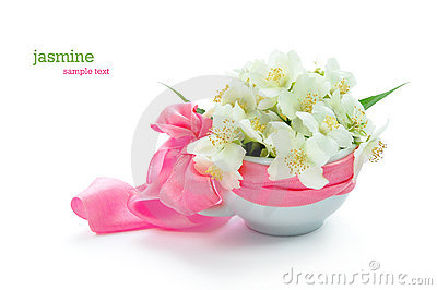 Bunch of jasmine flowers