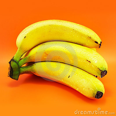 Free Bunch Of Bananas Royalty Free Stock Photo - 2539185
