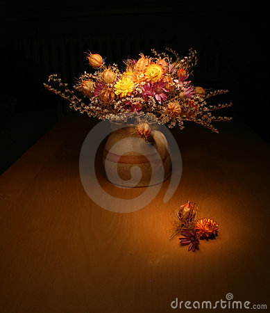 Free Bunch Of Everlasting Flowers Royalty Free Stock Image - 6553966