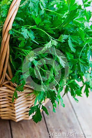Free Bunch Of Fresh Organic Parsley From Garden In A Wicker Basket, On Plank Wood Table, Rustic Style Royalty Free Stock Images - 94008789