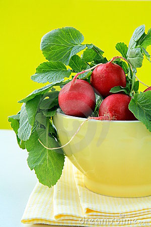 Free Bunch Of Red Ripe Radish Stock Images - 18313974
