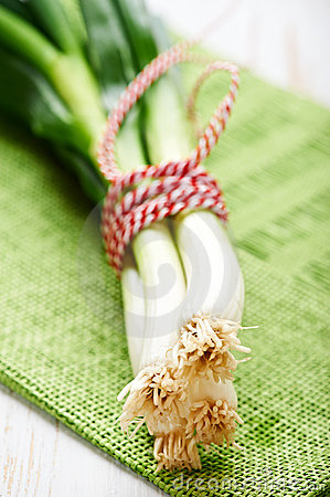 Free Bunch Of Spring Onions Stock Photo - 21900450