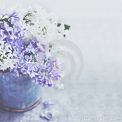 Free Bunch Of White And Purple Lilac Flowers In Metal Vintage Bucket Royalty Free Stock Image - 67781016