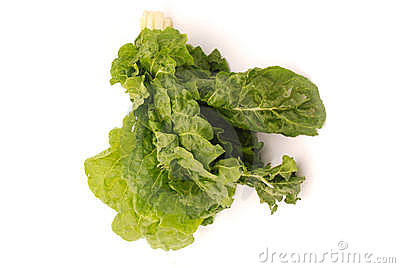 Bunch of perpetual spinach