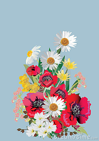 Bunch of poppy and chamomile flowers