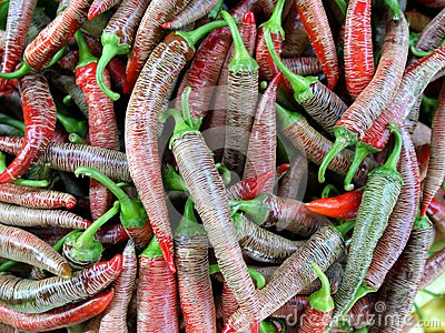 A bunch of red hot chili pepper