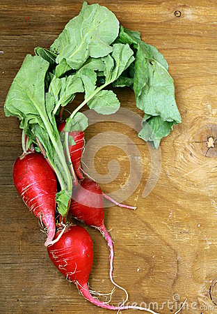 Bunch of red  radish on wooden background