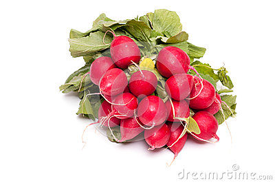 Bunch of red radishes
