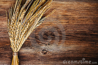 Bunch Of Wheat Ears Stock Photography - Image: 21503772
