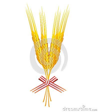 Bunch of wheat grains vector