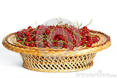 Bunches of red currants in a basket