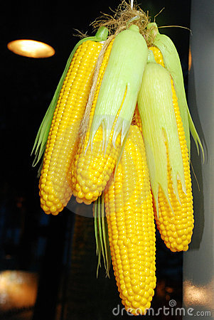 Bundle of corns