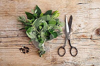 Bundle of fresh Kitchen Herbs