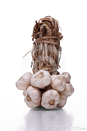 Bundle of garlic
