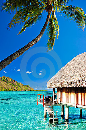 Free Bungallow And Palm With Steps To Amazing Lagoon Royalty Free Stock Image - 17950316