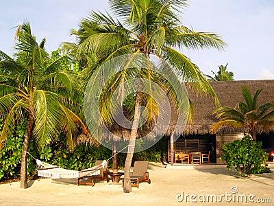 Bungalow sulla spiaggia fotografia stock immagine 39845743 for Disegni di bungalow contemporanei