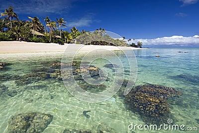 Bungalow sulla spiaggia tropicale con la barriera for Piccoli piani cottage sulla spiaggia