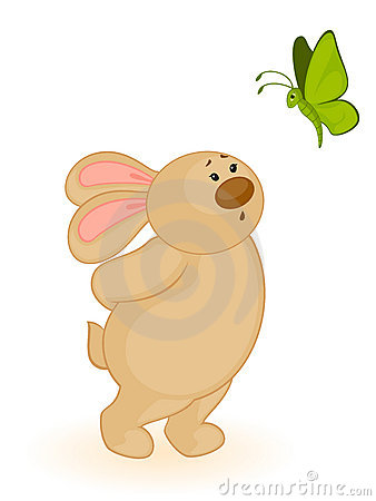 bunny with butterfly