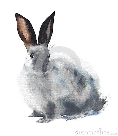 Bunny Eastern symbol tradition fluffy animal pet watercolor painting illustration isolated on white background Cartoon Illustration