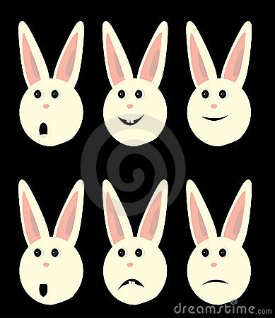 Bunny faces isolated