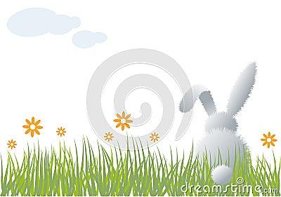 Bunny in grass,