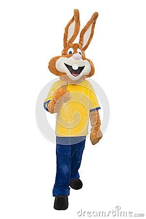 Free Bunny Mascot Costume Isolated On White Background  Stock Images - 64042514