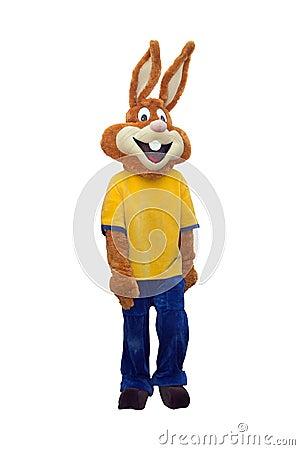 Free Bunny Mascot Costume Isolated On White Background Royalty Free Stock Photo - 64042515
