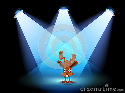 A bunny performing on a stage under the spotlights