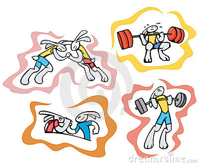 Bunny sport illustrations