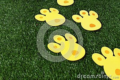 bunny tracks for Easter eggs hunt