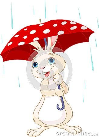 Bunny under umbrella