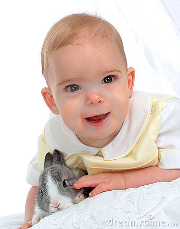 Free Bunny With Boy Stock Photos - 4742263