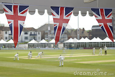 Bunting and cricket