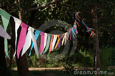 Bunting in the sunshine