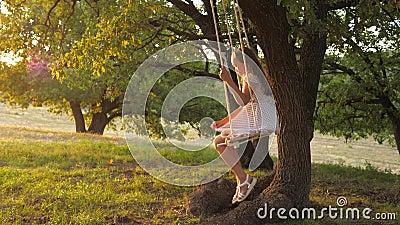 Buon concetto di infanzia un bambino vola una corda su un ramo di quercia in un parco del tramonto la ragazza ride, gioisce ragaz archivi video
