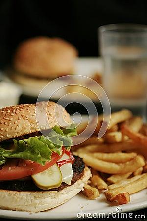 Free Burger Royalty Free Stock Photo - 2435785