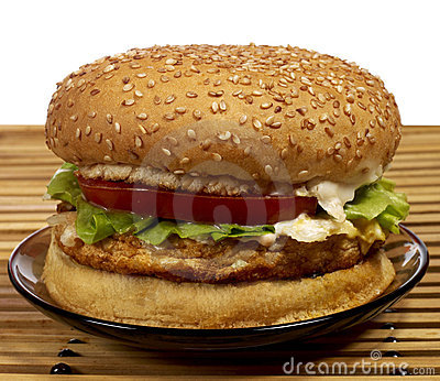 Burger Series Stock Image - Image: 4834561