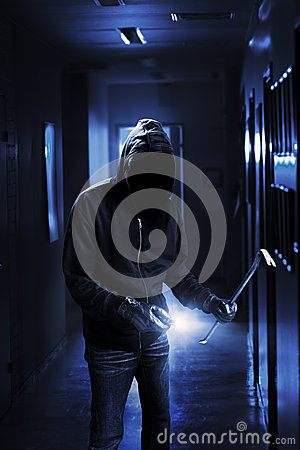 Free Burglar Royalty Free Stock Photography - 29883467