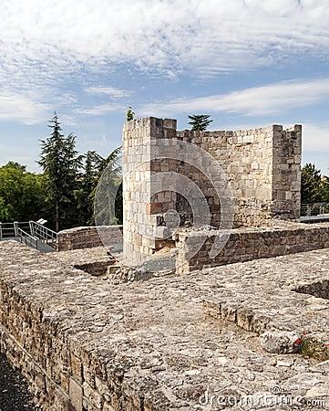 Burgos castle walls vertically