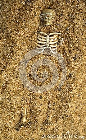 Buried skeleton bones in the sand