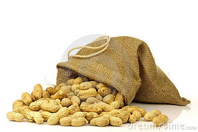 Burlap bag with roasted peanuts