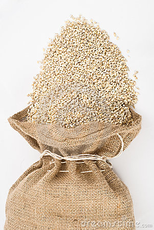 Burlap sack with pearl barley spilling out over a