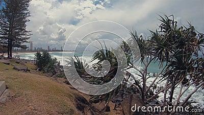 Burleigh Hill Pandanus Trees & Headland Ocean View Gold Coast Sea Landscape & Beach zdjęcie wideo