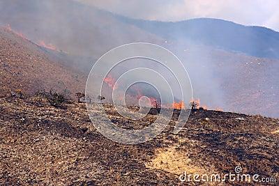 Burn disaster